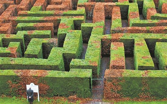 景观迷宫设计图